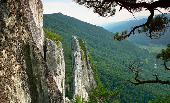 Spruce Knob Seneca Rocks Telephone Inc